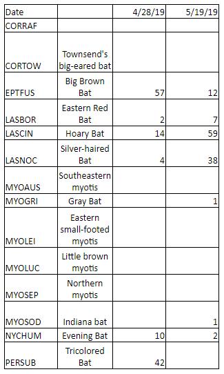 Bat monitoring results